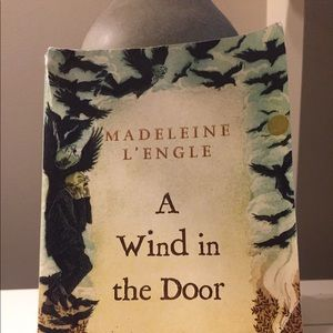 Other - A wind in the door is a great book